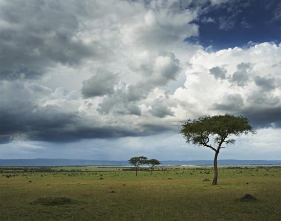 Singita Mara, Landscape