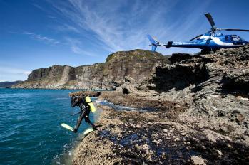 Scuba diving in New Zealand